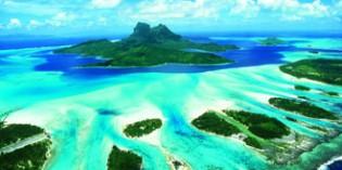 Tahiti – Zitronenhaie und Leopardenrochen