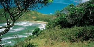 Florianópolis – die magische Inselstadt