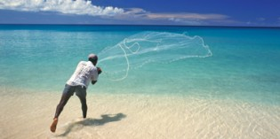 Barbados – Weihnachten mit heißen Rhythmen unter Palmen