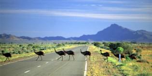 Südaustralien – viel Platz für Abenteuer