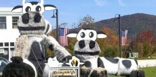 Tierischer Spaß beim Killington Hay Festival in Neuengland