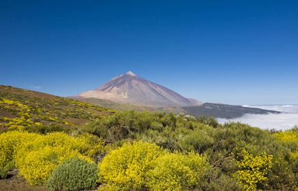 Das Wahrzeichen von Teneriffa: der Vulkan Teide.