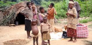 Kameruns Wunderwelt der Nationalparks