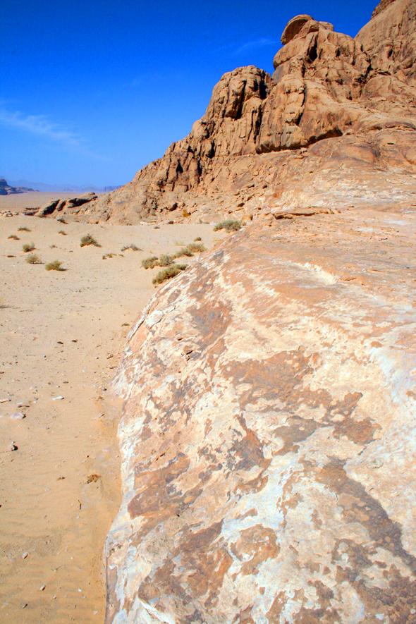 Wärmespender in den kalten Wüstennächten. (Foto Karsten-Thilo Raab)