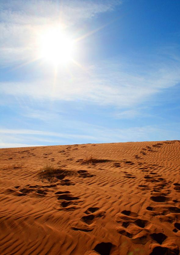 Bei der gleißenden Hitze sollte immer genügend Wasser mitgeführt werden. (Foto Karsten-Thilo Raab)