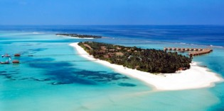 Abtauchen auf den Malediven: Mit Rochen auf Du und Du