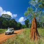 Queensland mit neuer Website und App für Selbstfahrer