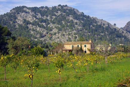 Mallorca, Pollenca, Foto Udo Haafke