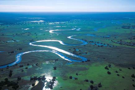 Okavango-Delta: Lebensraum für unzählige Tier- und Pflanzenarten. Foto djd/Botswana Tourism Organisation