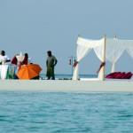 Freiwillig gestrandet im Indischen Ozean