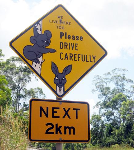 KoalaRoadsign_Copyright_TourismQueensland