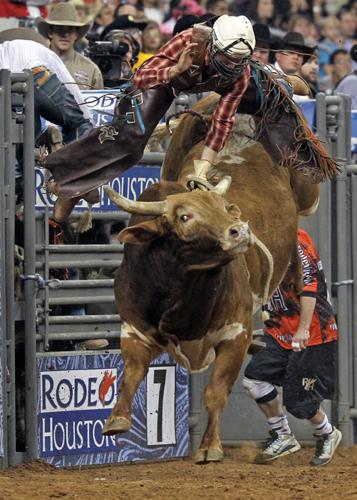 Houston Rodeo, Foto Greater Houston Convention & Visitors Bureau