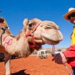 Verrücktes Australien: Dosenbierregatta und Bootsrennen ohne Wasser