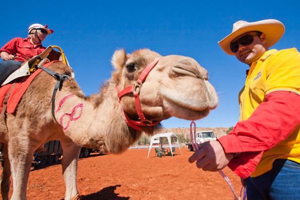 Camel Cup, Foto Tourism NT