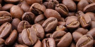 Kolumbiens Kaffeedreieck – eine einzigartige Kulturlandschaft