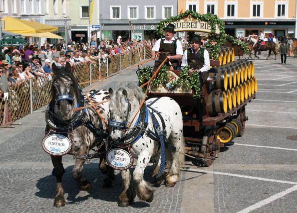 Die robusten und kräftigen Brauereipferde zeigen jährlich am Osterdienstag beim Rieder Pferdemarkt ihr Können. (Foto: Tourismusverband Ried/Litzlbauer)