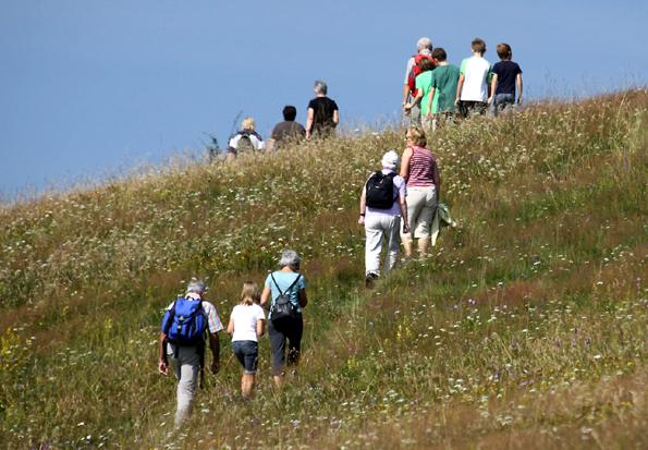 Die Trockenrasenhänge am Himmeldunkberg beherbergen eine Fülle von kleinen Kostbarkeiten der Tier- und Pflanzenwelt. (Foto: www.rhoenline.de)