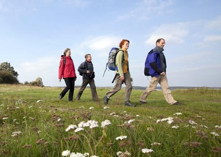 Wandern im Flachland liegt im Trend . Viele Möglichkeiten, weite Landschaften ohne Steigungen zu erkunden, eröffnen sich in Brandenburg. (Foto:  Paul Hahn)