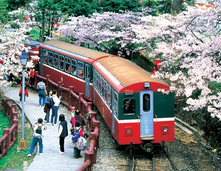 Ein Stück taiwanesische Eisenbahntradition: Die Alishan Bergeisenbahn.