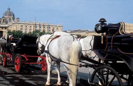 Nicht weniger als 165 Kutschen rollen durch die Innenstadt von Wien.