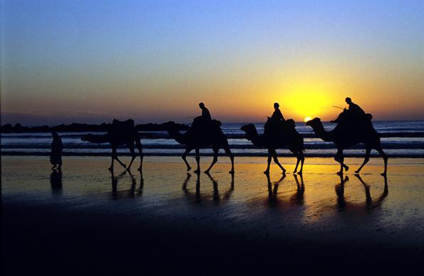 Marollo bietet nicht nur Sonne, Sand und Kameltouren am Strand, sondern auch Golfvergnügen am Mittelmeer.