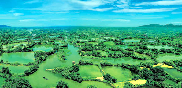Ein besonderer Anlaufpunkt für Naturverbundene: Die Xixi Wetlands (Foto: Hangzhou Tourism Commission)
