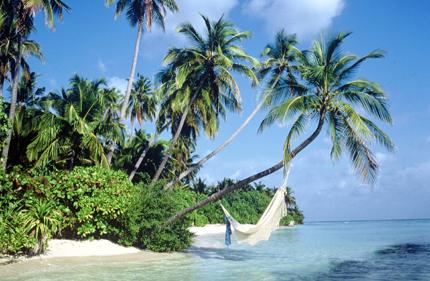 Die Malediven laden zum träumen und entspannen ein.