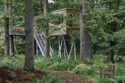 Schlafplatz der besonderen Art: Das Baumhaus in Bad Zwischenahn. (Foto: Udo Haafke)