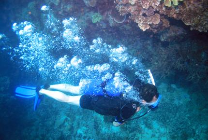 In Aqaba lässt sich Jordaniens Unterwasserwelt erforschen.