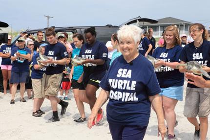 Mitarbeiter und Helfer des Karen Beasley Sea Turtle Rescue and Rehabilitation Center nehmen sich der Schildkröten an.