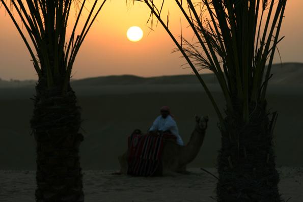 Nicht nur im Stadtzentrum von Dubai, sondern auch in den umliegenden Wüstengebieten gibt es einiges zu entdecken. (Foto: Karsten-Thilo Raab)