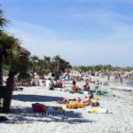 Kuriosum in Dänemark: Urlaub unter Palmen