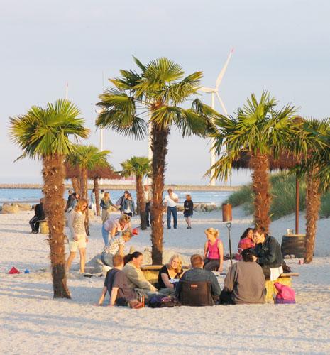 """Die """"dänische Karibik"""". Urlaubsgenuss unter Palmen in Frederikshavn."""