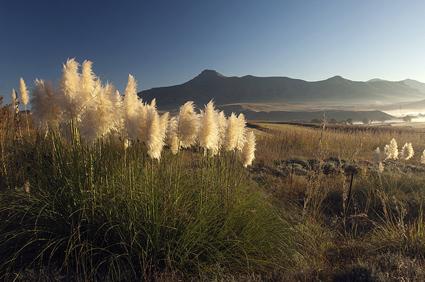 Wenig bekannt, aber landschaftlich überaus reizvoll: Südafrikas Free State. (Foto South African Tourism)