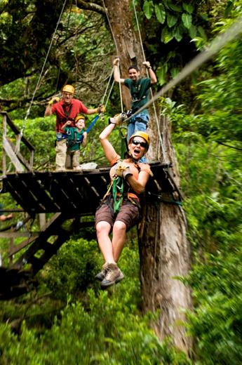 Zu einer der aufregendsten Arten, den Nebelwald rund um Boquete kennenzulernen, zählt die Boquete Zip Line Canopy Tour