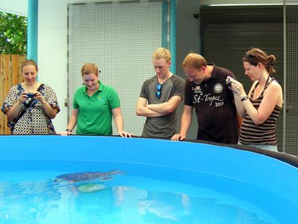 ImTurtle Rehabilitation Center können Tagesbesucher als auch Übernachtungsgäste des Fitzroy Island Resorts den Tieren hautnah kommen und den Tierpflegern bei ihrer Arbeit über die Schultern schauen.