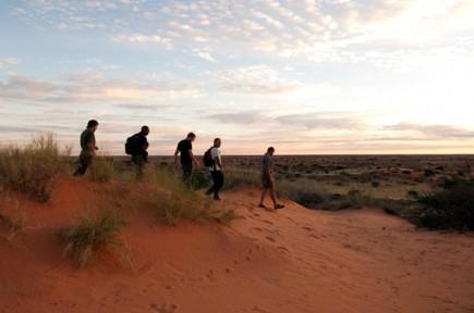 Auf Schusters Rappen kommt amn dem Zauber des Krüger Nationalparks am nächsten.