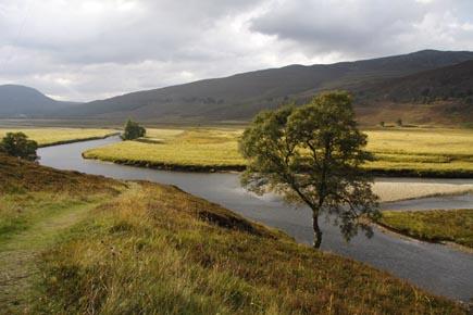 Ein Traumlandschaft: Das Dee Valley in Schottland. (Foto: Udo Haafke)