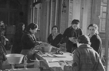 """Wie sehr der Hering für Nordfrankreich zum """"Volksfisch"""" wurde, zeigt die kürzlich eröffnete Ausstellung im Musée du dessin et de l'estampe originale in Gravelines, die noch bis zum 30.März 2014 zu sehen ist."""
