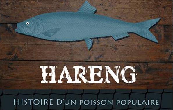Der Hering steht im November in Nordfrankreich im Mittelpunkt zweier feste sowie einer Ausstellung.