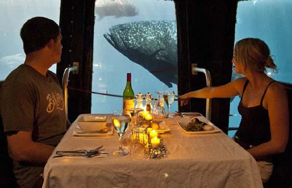 Als weitere Clou kann unter der Meeresoberfläche gespeist werden - neugierige Fischblicke garantiert.