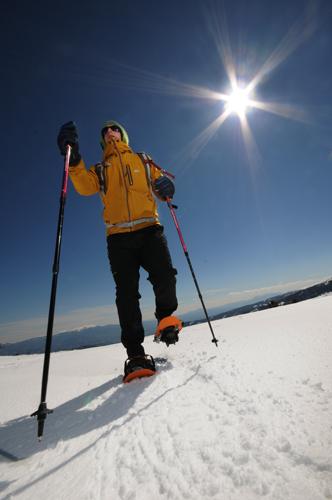 Die Flora und Fauna des Nationalparks Hohe Tauern lässt sich bei Schneeschuhwanderungen erkunden. (Foto: Rauschendorfer)