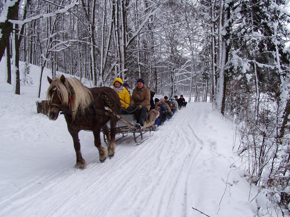 Zum Winter in Polen gehören auch Ausflüge mit dem Pferdeschlitten. (Foto: Polnisches Fremdenverkehrsamt)