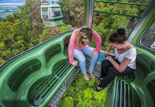 Mit den neuen Gondeln der Skyrail kann der tropische Regenwald aus der Vogelperspektive in Augenschein genommen werden.