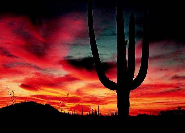 Der Himmel über Arizona überrascht immer wieder mit famosen Farbenspielen. (Foto: MTCVB)