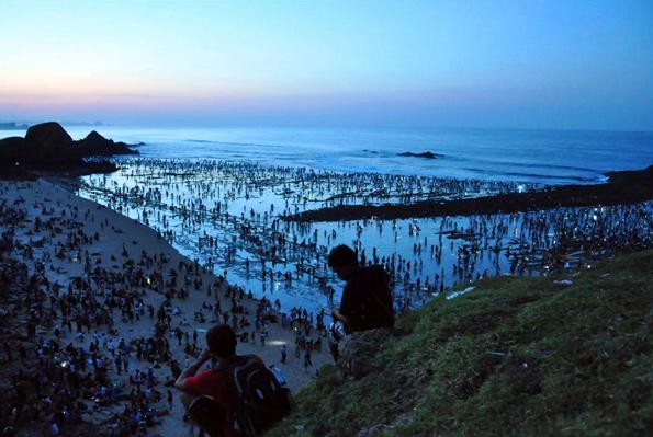 Nur einmal im Jahr, im Februar und März, ereignet sich das ungewöhnliche Naturspektakel in Lombok, wo sich dann Tausende bei Dunkelheit am Strand versammeln.