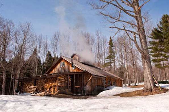 Gemahnt eher an eine Blockhütte - ein typisches Sugarhouse in Vermont. (Foto: Vermont Department of Tourism and Marketing)