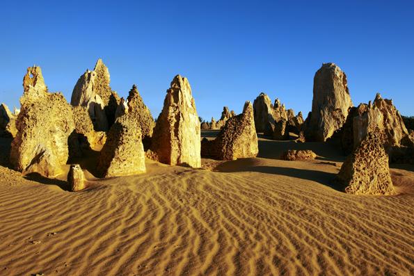 Bis zu vier Meter hohe, bizarre Kalksteinsäulen ragen aus dem gelben Sand der Pinnacle-Wüste im Nambung National Park hervor.