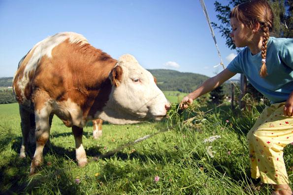 In der Gegend um Treuchtlingen gibt es auch die Möglichkeit, Ferien auf dem Bauernhof zu buchen. (Foto: djd)