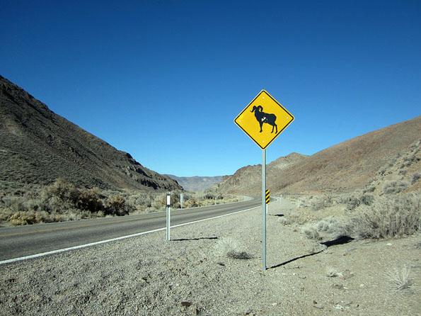 Staubig und leer: Die Straßen Nevadas wie hier unweit des Carroll Summits.